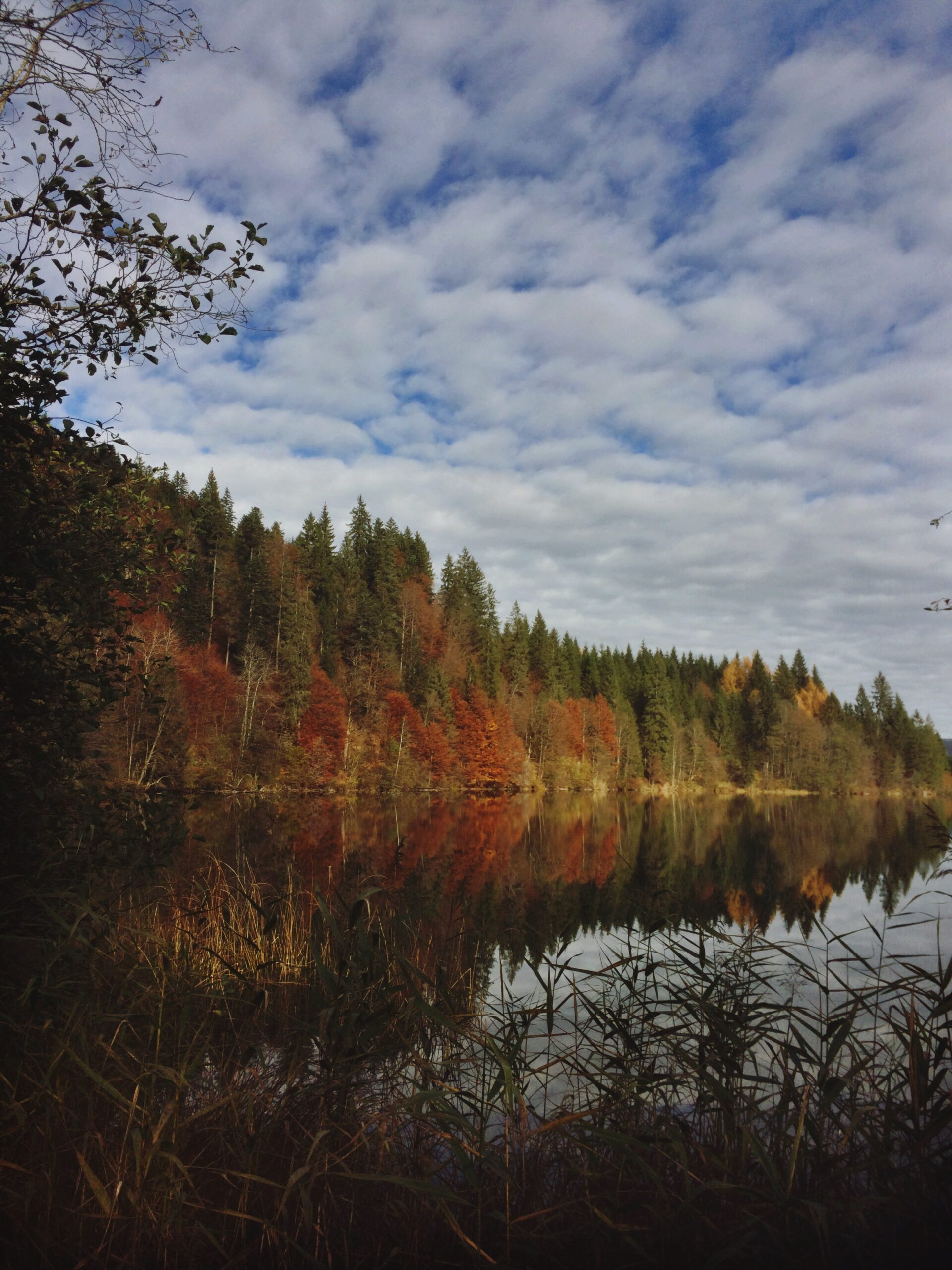 Barmsee; Bayern; iphoneonly; afterlight